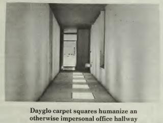 dayglo